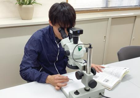 顕微鏡を覗く女性スタッフ